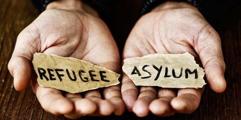 banner-asylum
